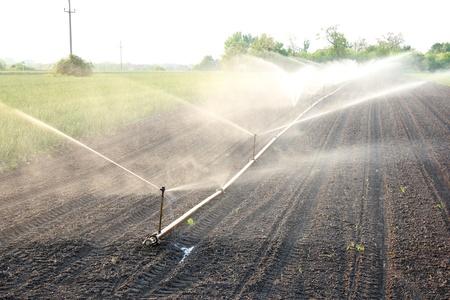 L'irrigation agricole