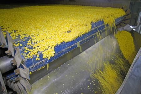 industria alimentaria: F�brica de procesamiento de ma�z, la industria alimentaria