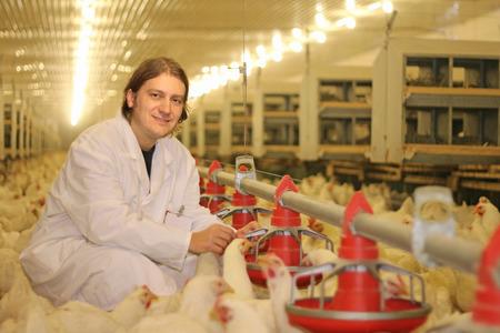 veterinario: Veterinario que trabaja en la granja de pollo