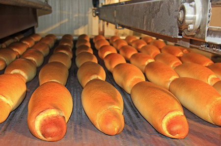 baking oven: Baked loaf of bread in the bakery