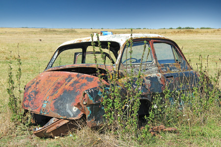 junk car: Wreck car in a field, overgrown with weeds and forgotten
