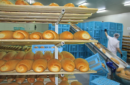 sorting: Fresh baked bread in bakery, packing and sorting for the retail