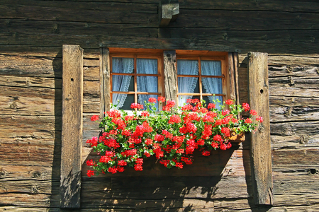 Vintage Style Wooden Window With Flowers In Alps