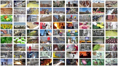 Collage industrial production. People working in a food industry, construction, agriculture, farm animal, foundry, processing factory, bakery, metal industry, production of fruits and vegetable