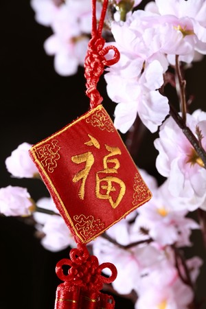 Chinese new year decorative item with auspicious word, plum blossom in the background Stock Photo - 4186902