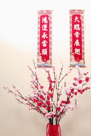 auspicious: Chinese new year banners with auspicious idioms