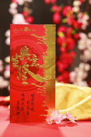 Chinese new year greeting card with plum blossom photo