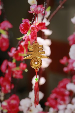 auspicious: Chinese new year decorative item with auspicious word hanging on plum blossom Stock Photo