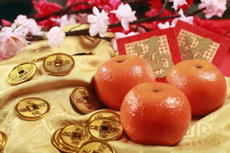 Antique chinese coins, red packets and mandarin oranges, plum blossom in the background