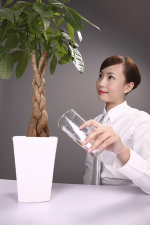 Businesswoman pouring some water into the vase photo