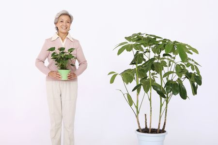 Senior woman holding potted plant