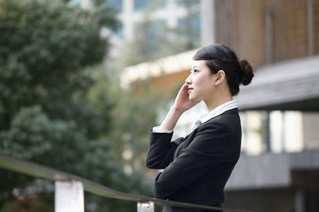 Businesswoman talking on the phone Stock Photo - 4636179