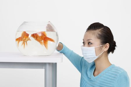 Woman wearing surgical mask observing goldfishes in fish bowl photo