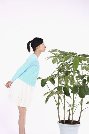 sniffing: Woman sniffing potted plant Stock Photo
