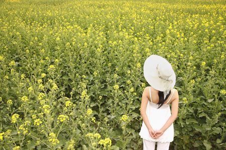 Woman with hat enjoying the view of rape field photo