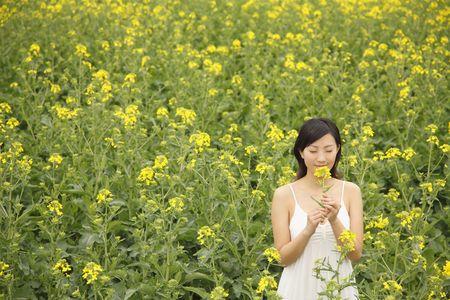 oilseed: Woman smelling oilseed rape