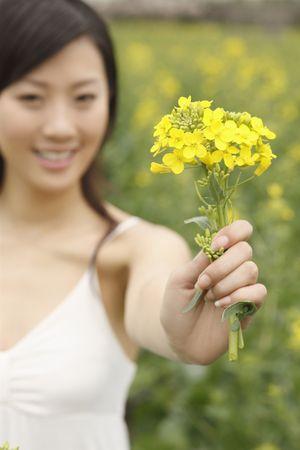 Woman holding oilseed rape photo