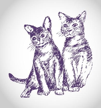 Sketch cat and tomcat illustration