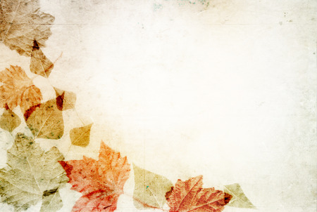 Colorful autumn leaves on canvas - background concept