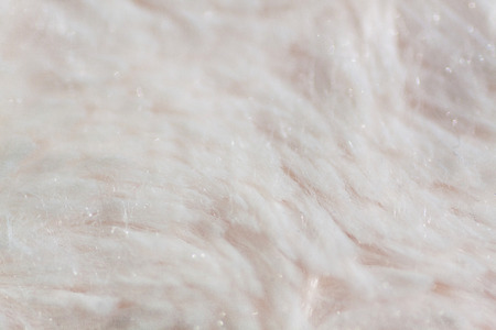 Macro detail of light shaggy fur texture background