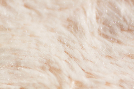 Long fibers soft fur texture macro – abstract background