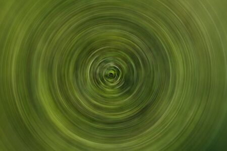 Green spiral abstract background – fantasy forest concept