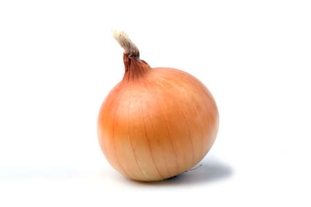 Onion bulb isolated on white background photo