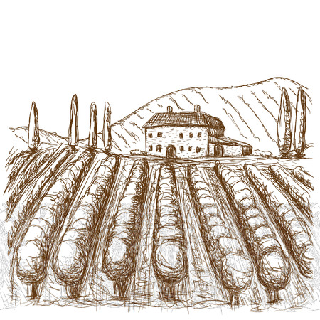 Italian vineyards drawn stroke black and white. vector illustration. eps Vettoriali
