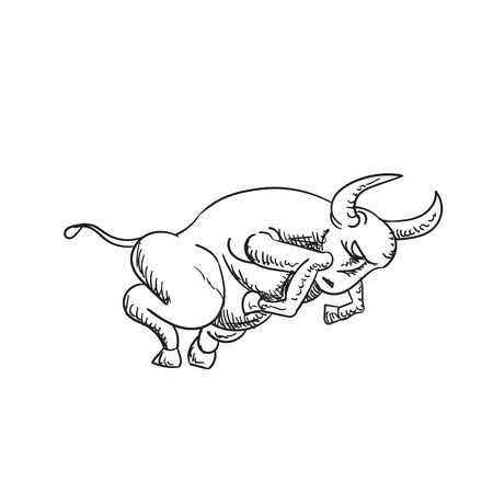 Zodiac sign Taurus on a white isolated background.