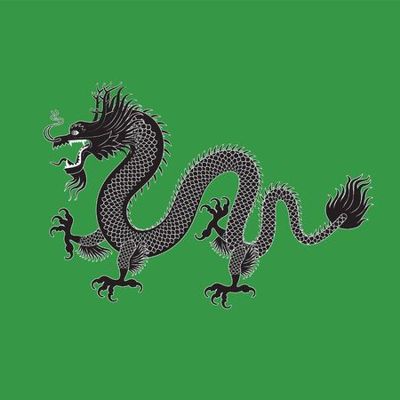 Illustration of Traditional chinese Dragon on a green isolated background , vector illustration