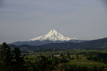 Taken from Hood river view point. Early morning as the sun  is just shining on the mountain. photo