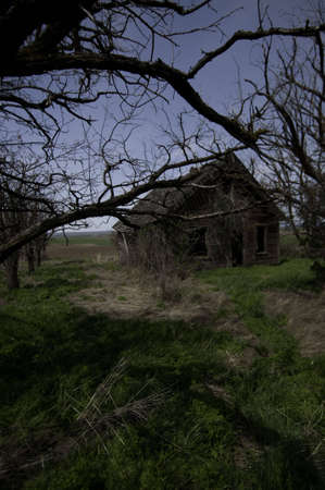 The colored version of the image. The tree have died and the house is ready to colapse.