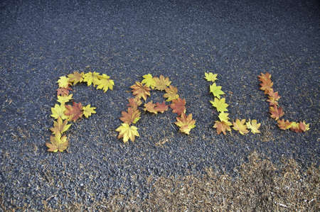 Coloured leaves spelling out the word fall on the pavement. Stock Photo