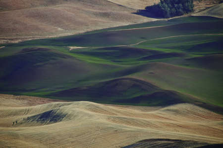 Rolling farm fields in palouse, The winter wheat has been planted.Hay has just been cut.View from hill top. Stock Photo