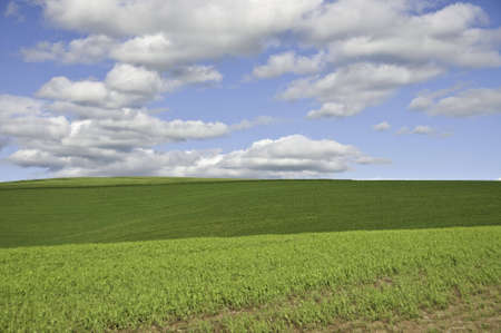 Large fluffy clouds above green hills. Stock Photo