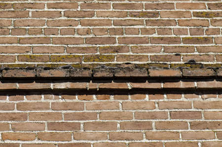 Brick wall with fancy outcropping at the top. It has moss growing on it. Great for backgrounds.
