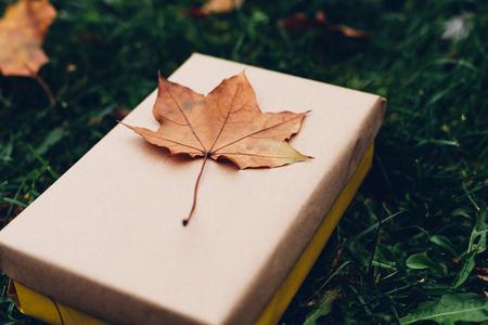 Closeup of leaf on gift Banque d'images