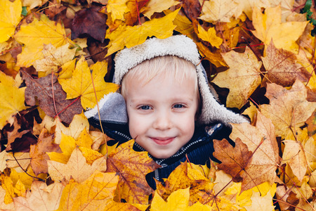 young leaf: Cute boy enjoy in leaves. Autumn games.