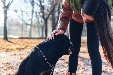 endear: Beautiful girl caresses her dog Stock Photo