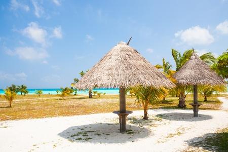 sunshades: sunshades at a tropical beach with blue sky