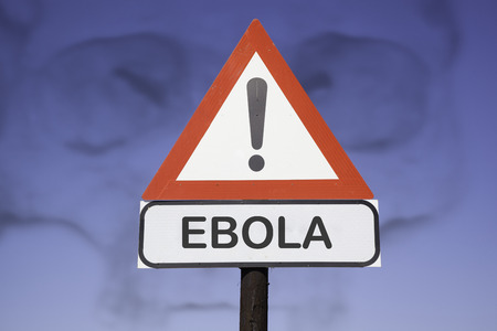 exitus: White road warning triangle with black  exclamation point and red frame on  a wooden mast in front of a blue sky. A second rectangular sign warns in english about ebola