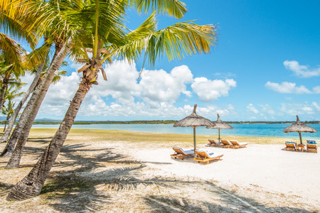 beautiful tropical beach with green coconut palms straw sunshades and wooden sunbeds in front of a turquoise sea with a blue sky, Mauritius, Africa photo