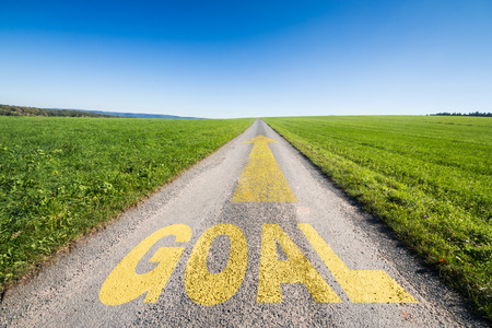 green meadow and a small tar road with an yellow arrow  leading  to the horizon. On the road is written the word goal. Concept for business growth and success. photo