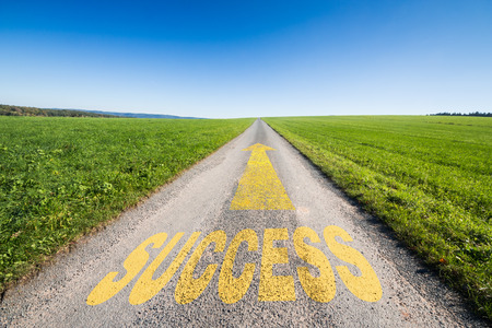 green meadow and a small tar road with an yellow arrow  leading  to the horizon. On the road is written the word success. Concept for business growth and success.