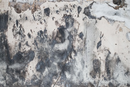 tattered: background of an dark and old grungy wall with tattered wallpaper
