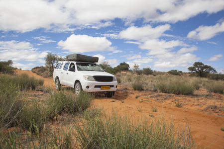 four wheel drive: white four by four car with a roof top tent on a red sandy Kalahari desert trail, Kgalagadi Transfrontier Park, South Africa
