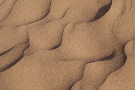 desert: nature background with desert sand dunes and ripples