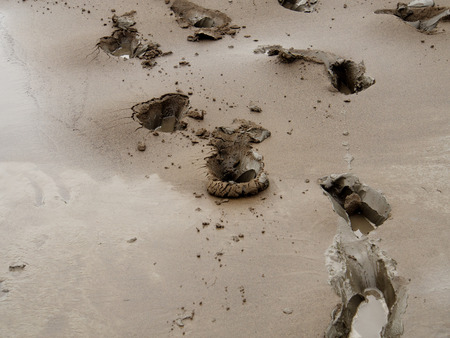slob: Prints of human feet on the bank of the river in a deep black mud