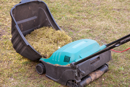 remediation: Spring gardening. Raking of dry grass using a special gardening device