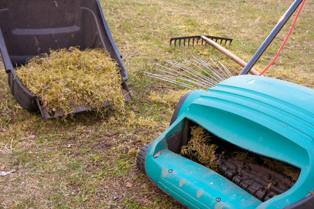 reclamation: Spring gardening. Raking of dry grass using a special gardening device